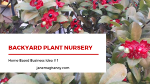 Plant Nursery from Home