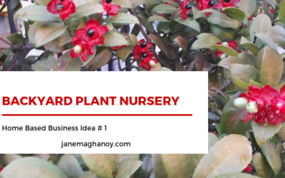 Home Based Business Idea # 1 : Starting Backyard  Plant Nursery